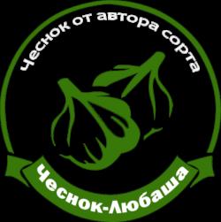 Чеснок Любаша
